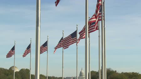 Flags of the United States at Washington Monument in Washington, DC Stock mozgókép