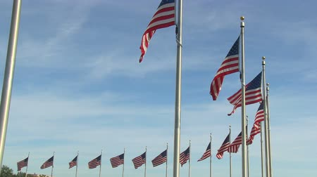 Flags of the United States at Washington Monument in Washington, DC Stok Video