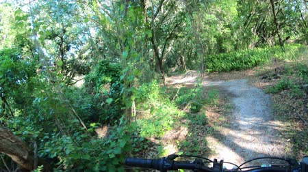 Mountain biking in a Central Florida park Stok Video