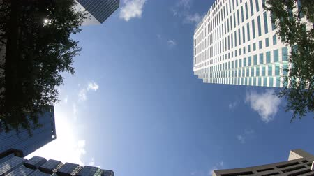 TAMPA, FLORIDA - MAY 2, 2018: Downtown office buildings in the Floridian city of Tampa, as seen from a low vantage point. Stok Video