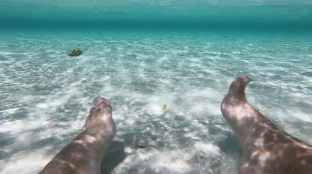 Feet underwater and windsurfer