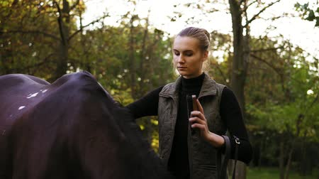 potro : Attractive young woman brushing and grooming her stunning muscular horse. Cleaning beautiful and healthy shiny horse coat with natural bristle brush outside Vídeos
