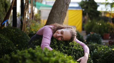 boxwood : Young female florist in apron embracing green boxwood in the greenhouse, smiling and looking in the camera. Happy woman in the greenhouse loves buxus and her job