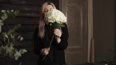 hortênsia : Pink haired beautiful florist holding in hands giant white hydrangea flower. Takes off extra leaves
