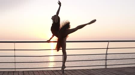 baixo : Full length. A ballet dancer in a black tutu, doing exercises, leaning on a bar near the sea. Young ballet dancer stretches her legs in a squat. Morning, pink sunrise. Slow motion