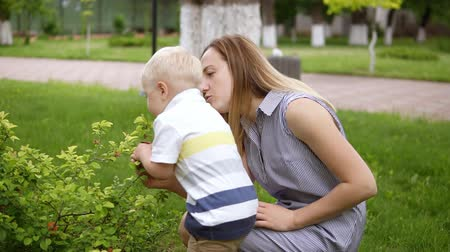 magyarázza : A little boy is interested in a green bush. Touching, sniffing it. Mom talks to her son, explains. Green park. Slow motion