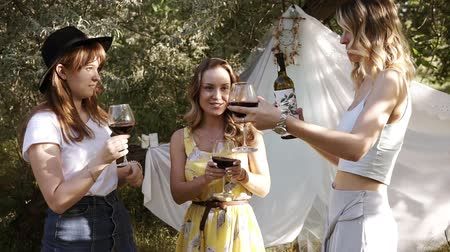 cheers : Three positive young women spending time outdoors. Drinking wine from the wine glasses. Sunny, summer day on nature Stock Footage