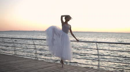 leunen : Beautiful scene of a ballet dancer near the crossbar stretching her legs, practicing classic pas. Morning marine view, sunrise Stockvideo