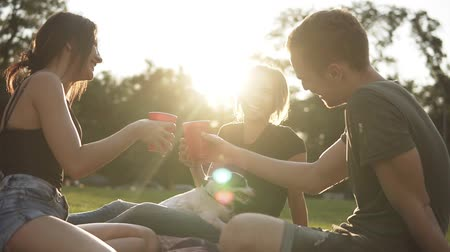 plastic cups : Group of three friends drinking in the park from the red plastic cups while sitting on the green grass with black and white small dog with them. Hanging out with buddies in fresh air. Picnic concept, happy lifestyle Stock Footage