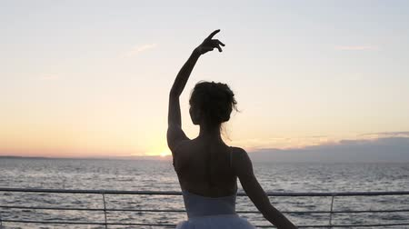 набережная : Graceful ballerina dancing elements of classical ballet., raising hands sensually. Backside view of a ballerina standing in front the sea or ocean