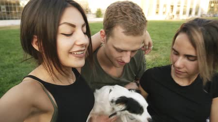 on camera : Extremely close up of three caucasian friends - two women, young man and small dog are posing for camera for taking picture together. Buddies are hanging out outdoors in the park