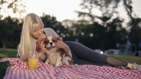 spanyel : Beautiful caucasian blonde woman with her dogs in park, relaxed on green grass on a litter - caress and cuddling her loving pet - cavalier king charles spaniel Stok Video
