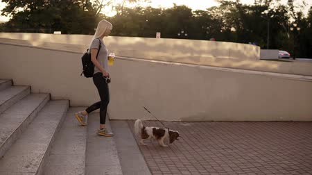 Чарльз : Side view of woman walking with a dog at the leash in the city. Walking down the stairs in the park, holding an orange drink in plastic cup. Slow motion Стоковые видеозаписи