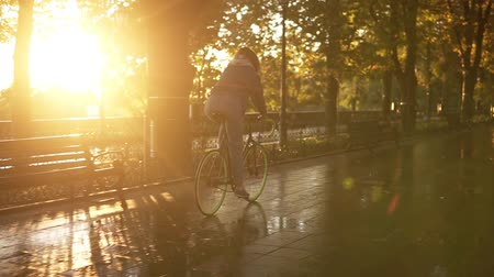 бульвар : Backside view of a pretty female riding a bicycle in the morning park or boulevard with a wet asphalt . A young woman in blue jeans riding a trekking bike while the city is empty. Lens flares