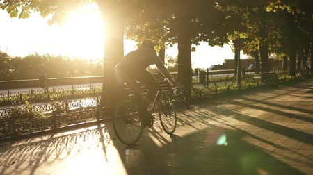 kikövezett : Rare view young man cycling a bicycle in the morning park or boulevard by paved road . Slow motion of young man riding a trekking bike, wind blowing and waves his shirt. Summer, autumn empty city park. Sun shines Stock mozgókép