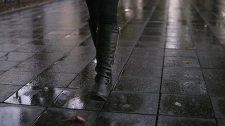 rajstopy : Woman take walk at autumn park walking along the pavement alley. Close up legs and shoes view. Graceful lady wear black high boots. Autumn weather, rayny, wet road. Front view