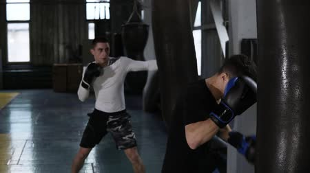 定型化された : Two caucasian young male boxers in casual clothes are beating the black boxing pears. Hardworking, training process at boxing gym. Side view. Slow motion 動画素材
