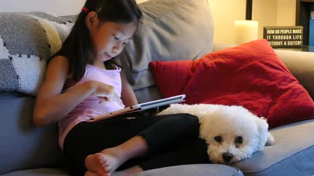 touchpad : A cute little Asian girl uses her tablet alone in the living room at night with her faithful puppy at her side.