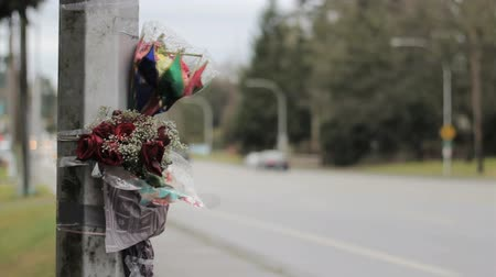 запомнить : Flowers are taped against a light standard by the side of a busy street following a fatal auto accident serving as a reminder for all of us to slow down and drive safe!
