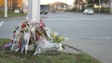öfke : Flowers at a busy intersection mark a tragic unnecessary death. Stok Video