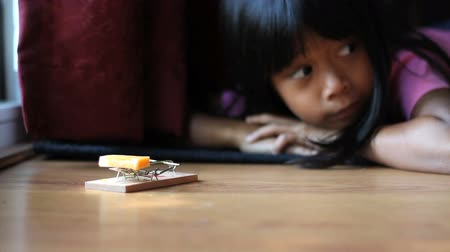 rodent control : A cute little determined Asian girl waits patiently for a mouse to show up and be caught in her new mouse trap. Stock Footage