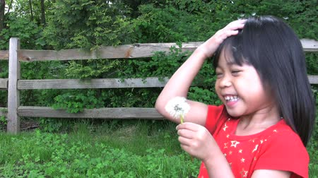 dmuchawiec : Two cute little Asian girls engage in a classic summer time dandelion war. Wideo