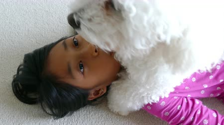 cachorro : A cute little 9 year old Asian girl spends time hugging and cuddling her new Bichon Frise puppy.