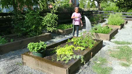 kertészet : A cute little 9 year old Asian girl enjoys tending to her new garden in the summer.