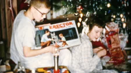 matky : A young teenage boy gets a brand new Erector Set for Christmas in Cleveland, Ohio in 1956.