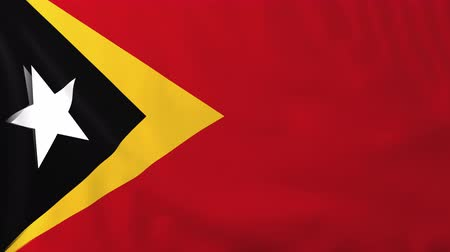 east timor : Flag of East Timor, slow motion waving. Rendered using official design and colors. Highly detailed fabric texture. Seamless loop in full 4K resolution. ProRes 422 codec. Stock Footage
