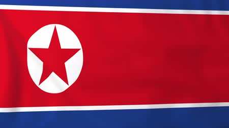 north korean flag : Flag of North Korea, slow motion waving. Rendered using official design and colors. Highly detailed fabric texture. Seamless loop in full 4K resolution. ProRes 422 codec.