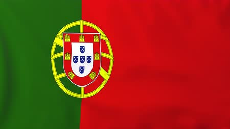 portugalsko : Flag of Portugal, slow motion waving. Rendered using official design and colors. Highly detailed fabric texture. Seamless loop in full 4K resolution. ProRes 422 codec.