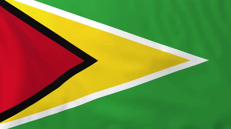 guyana : Flag of Guyana, slow motion waving. Rendered using official design and colors.
