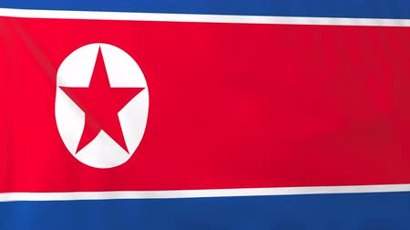 north korean flag : Flag of North Korea. Rendered using official design and colors. Seamless loop.