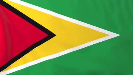 guyana : Flag of Guyana. Rendered using official design and colors. Seamless loop.