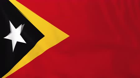 east timor : Flag of East Timor. Rendered using official design and colors. Seamless loop. Stock Footage