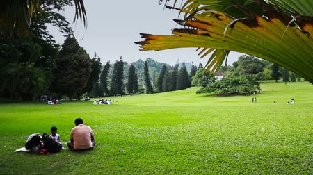 setting : Sri lanka. National botanical garden.