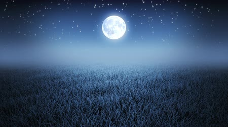 yolları : Mystic night flight over grass under starry sky and Moon Stok Video