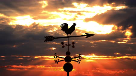 lapát : Weathervane cockerel floating against red sunset Stock mozgókép