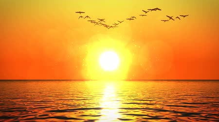 Flock of birds flying over ocean surface heading towards orange sunset