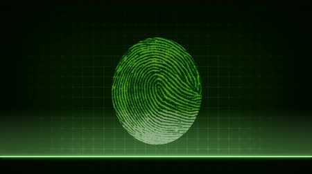 Step by step animation of detailed fingerprint scanning and biometric data analyzing process Stock mozgókép
