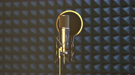 вещание : Professional microphone in sound recording studio for vocal recording or radio broadcasting