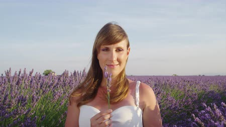 valensole : SLOW MOTION: Young woman smelling purple lavender flowers in the middle of an endless lavender field Stock Footage