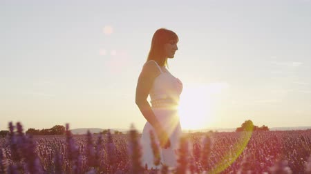 чувственный : SLOW MOTION: Young woman walking through beautiful violet lavender field at golden summer sunset Стоковые видеозаписи