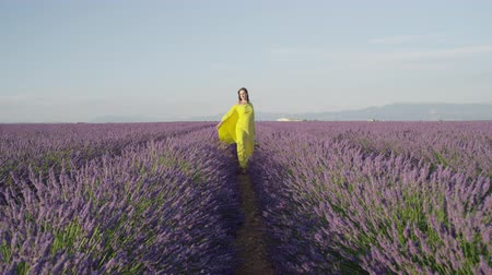 valensole : SLOW MOTION: Young woman in yellow dress walking and spinning in purple lavender field