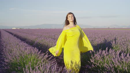 lavanda : SLOW MOTION: Pensive young woman in yellow dress fluttering in the wind walking through beautiful violet lavender field in summer evening in Provence, France