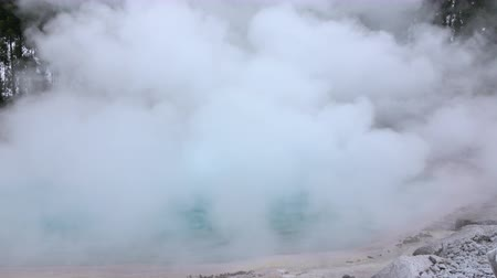 geologia : CLOSE UP: Hot water geyser in geothermal spring steaming