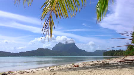 CLOSE UP: Idyllic empty white sand beach on Bora Bora island resort Wideo