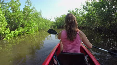 kano : Happy young woman enjoying vacations kayaking on calm river with beautiful lush green mangrove trees on both sides of the water canal Stok Video
