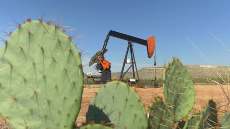 szamár : CLOSE UP: Industrial oil pump jack working and pumping crude oil for fossil fuel energy with drilling rig in oil field. Nodding donkey pump against the blue sky pumping behind the desert cactuses